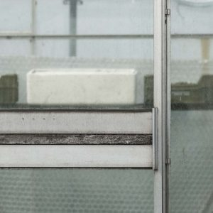 Annemarie-van-Hooff-CLoseUp-foto-op-dibond60x60cm-105