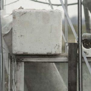 Annemarie-van-Hooff-CLoseUp-foto-op-dibond60x60cm-106