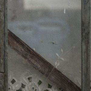 Annemarie-van-Hooff-CLoseUp-foto-op-dibond60x60cm-110