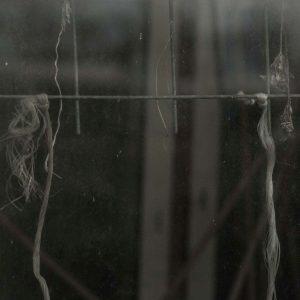 Annemarie-van-Hooff-CLoseUp-foto-op-dibond60x60cm-65