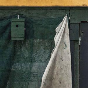 Annemarie-van-Hooff-CLoseUp-foto-op-dibond60x60cm-69