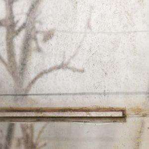 Annemarie-van-Hooff-CLoseUp-foto-op-dibond60x60cm-74