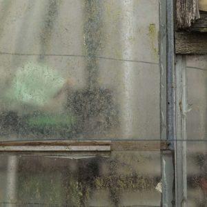 Annemarie-van-Hooff-CLoseUp-foto-op-dibond60x60cm-75