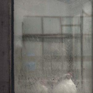 Annemarie-van-Hooff-CLoseUp-foto-op-dibond60x60cm-88