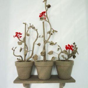 Annemarie-van-Hooff--Drie-Geraniums--