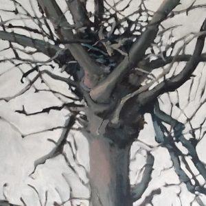 Annemarie van Hooff 'Nest 1' 100 x 120 cm