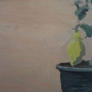 Annemarie-van-Hooff---Rotterdam--15-x-20-cm