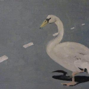 Annemarie-van-Hooff--Voorjaarscollectie--overstekende-zwaan
