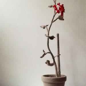 Annemarie-van-Hooff-detail-geranium